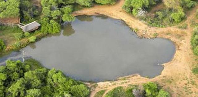 pete s pond on mashatu