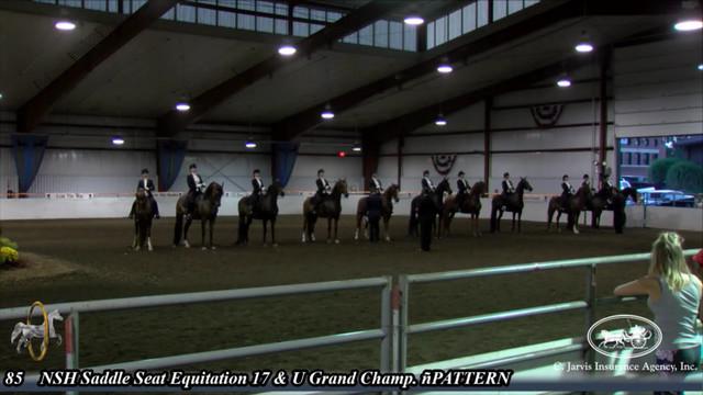 085 Nsh Saddle Seat Equitation 17 Under Grand Championship